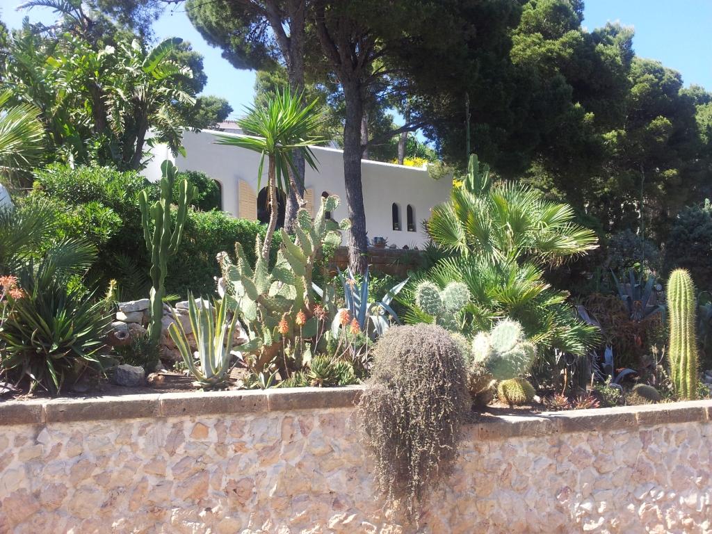 Ferienhaus mit grossen Garten Wifi Wlan Internet ohne Swimmingpool