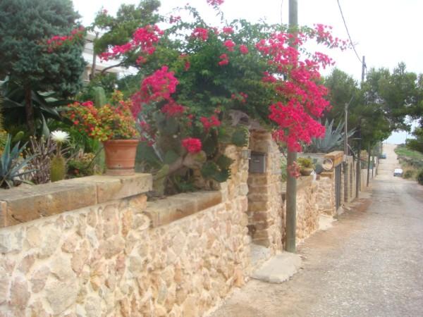 L'Olla Strasse bis zum Meer Ferienhaus Cala Ratjada