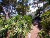 Garten Weg Cala Ratjada ohne Schwimmbad.jpg